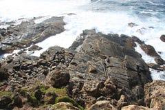 De rotsachtige kustlijn van het kangoeroeeiland royalty-vrije stock afbeelding