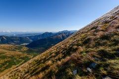 de rotsachtige mening van het berg piekgebied in Slowakije - de wijnoogst ziet eruit Royalty-vrije Stock Afbeelding