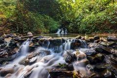 De rotsachtige natuurlijke waterlente Royalty-vrije Stock Foto's