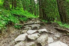 De rotsachtige sleep van de Berg Royalty-vrije Stock Foto