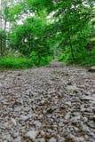 De rotsachtige sleep van de Berg Stock Fotografie