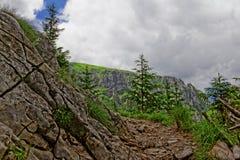 De rotsachtige sleep van de Berg Royalty-vrije Stock Foto's