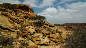 De rotsbuitenkant van Laas Geel van holschilderijen dichtbij Hargeisa Somalië Royalty-vrije Stock Afbeelding