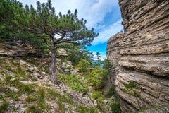 De rotsen in de landstreek Taraktash Stock Afbeeldingen