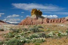 De Rotsen en Wildflowers van de pluim Royalty-vrije Stock Afbeeldingen