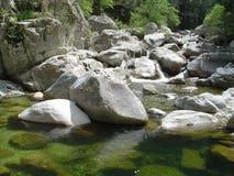 De rotsen van Corsica Stock Fotografie
