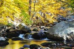 De Rotsen van de Kreek van de herfst en Gele Bomen Royalty-vrije Stock Afbeeldingen