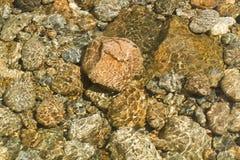 De rotsen van de rivier Royalty-vrije Stock Foto