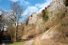 De rotsen van het kalksteen in Dovedale Royalty-vrije Stock Fotografie