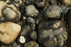 De Rotsen van het strand Stock Afbeeldingen