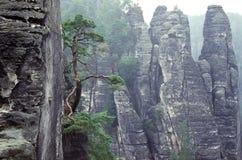De rotsen van het zandsteen Stock Fotografie
