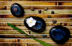 De rotsen van Zen met bloem Royalty-vrije Stock Foto's
