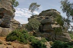 De Rotsen Yorkshire van Brimham Stock Afbeeldingen