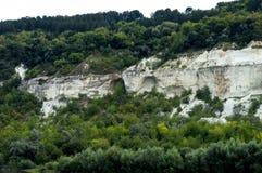 De rotsen zijn behandeld met bomen dichtbij een rivier stock foto