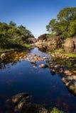 De rotspool dichtbij Lençà ³ is, Chapada Diamantina, Bahia, Brazilië stock foto
