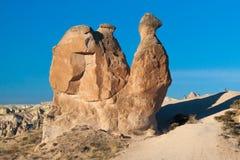 De Rotsvormingen van Cappadocia van de kameelrots Stock Fotografie