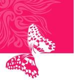 De roze achtergrond met vlinder Stock Afbeelding