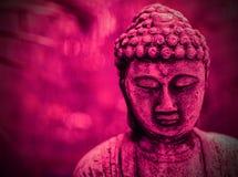 De roze achtergrond van Boedha Royalty-vrije Stock Afbeeldingen
