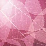 De roze achtergrond van de bladerentextuur Het patroon van de gebladertedecoratie Stock Foto