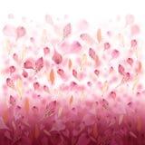 De roze Achtergrond van de Valentijnskaart van de Bloem van de Liefde Royalty-vrije Stock Afbeeldingen