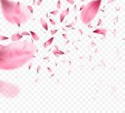 De roze achtergrond van sakura dalende bloemblaadjes Vector illustratie stock illustratie
