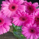 De roze Bloemen in een glasjampot, sluiten omhoog royalty-vrije stock foto