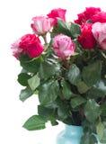 De roze bloemen sluiten omhoog Stock Fotografie