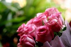 De roze bloemen sluiten schoten royalty-vrije stock fotografie