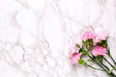 De roze bloemenanjers op de marmeren mening van de lijstbovenkant en vlak leggen stijl stock afbeeldingen
