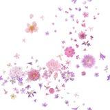 De roze Bloesembloem ontluikt Wind Stock Foto's