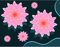 De roze 3D vectorillustratie van de lotusbloembloem met bezinningsschaduw op donkerblauwe achtergrond Vector Illustratie