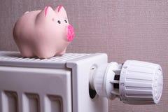 De roze de de besparingselektriciteit en verwarmingskostennen van het spaarvarken, sluiten omhoog Stock Foto's
