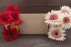 De roze en rode gerberabloemen zijn in de bloempotten, op woode Royalty-vrije Stock Afbeeldingen