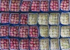 De roze en Witte Rozenuitvoer, Ecuador stock foto