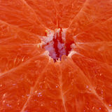 De roze grapefruit van de close-up Stock Foto