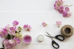 De roze lokale flora van bloemenbougainvillea van Azië op wit royalty-vrije stock afbeeldingen