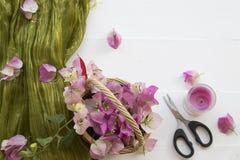 De roze lokale flora van bloemenbougainvillea van Azië op wit stock afbeelding