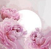 De roze pioen bloeit achtergrond met een rond etiket Royalty-vrije Stock Afbeelding