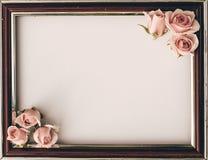 De roze rozen bloeien lege witte grens zachte achtergrond voor valentijnskaart royalty-vrije stock fotografie