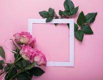De roze rozen en een Witboekkader zijn verfraaid met verse bladeren op een roze achtergrond Vlakke lay-out Feestconcept stock afbeeldingen