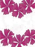 De roze Ruimte van het Centrum van de Kaart van Bloemen royalty-vrije illustratie