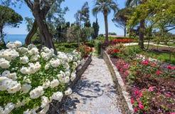 De roze tuin ` IL Roseto ` in Genoa Genova Nervi, binnen Genoa Nervi Parks, Italië stock afbeelding