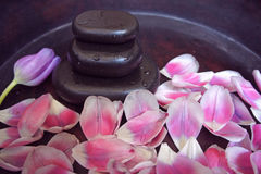 De roze tulip blackstone woodsink spa massage ontspant therapie royalty-vrije stock foto