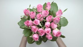De rozen en stelt voor stock footage