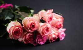 De rozen sluiten omhoog Mooie rozen op donkere achtergrond Stock Fotografie