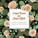 De rozen van de bloemenpastelkleur en de eucalyptusbladeren, waterverf, kunnen u zijn Stock Afbeelding