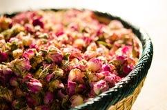 De rozen van Damascus Royalty-vrije Stock Fotografie