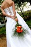 De Rozen van de bruid Stock Foto's