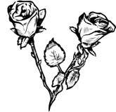 De Rozen van valentijnskaarten royalty-vrije illustratie