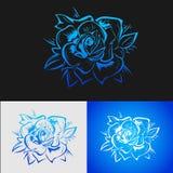 De rozen zijn Blauw Stock Fotografie